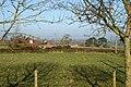 Bungalow near Court Farm, Clyst St George - geograph.org.uk - 95441.jpg