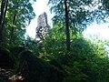 Burg hohenrod.jpg
