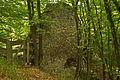 Burgruine Mahrersdorf nördliche Aussenwand.jpg