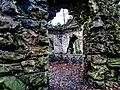 Bushy Park, Dublin -146442 (44661351910).jpg