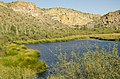 Butcher Jones Trail, Tonto National Forest, Fort McDowell, AZ 85264, USA - panoramio (46).jpg