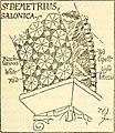 Byzantine and Romanesque architecture (1913) (14775915942).jpg