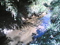 Córrego Itaim Mirim em Itu - panoramio - zardeto.jpg