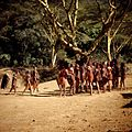 COLLECTIE TROPENMUSEUM Masai krijgers verzamelen zich voor een dans TMnr 20038839.jpg