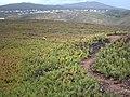 Cabo da Roca08.jpg