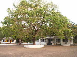 University of Calicut - The University Cafeteria