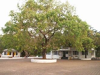 University of Calicut - The University Cafeteria