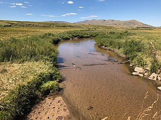 Canadian River (North Platte River tributary) river in Colorado