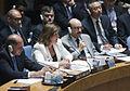 Canciller destaca en Naciones Unidas el aporte de Sudamérica a la preservación de la paz y seguridad (9456488869).jpg