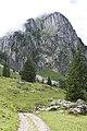 Canton de Schwytz - panoramio (68).jpg