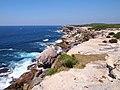 Cape Solander - panoramio (3).jpg