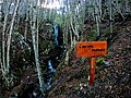 Cascada Nahiara.jpg