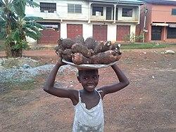 Cassava on sale.jpg