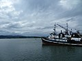 Cathlamet Washington Tug Boat.jpg