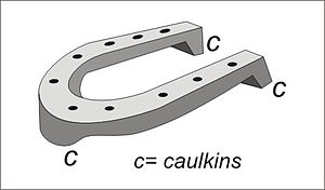 Caulkin - Image: Caulkins on a horseshoe