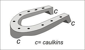 Caulkin