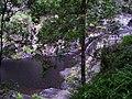 Cedar Creek Falls, Brisbane hinterland, Australia - panoramio.jpg