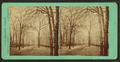 Cedar St. from Park St., April 1 '72, by Baldwin, Schuyler C. (Schuyler Colfax), 1823-1900.png