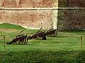 Cetatea Fagaras - tunurile de aparare.jpg