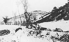 A line of soldiers in white camouflage lying on the snow, with weapons pointing towards the left
