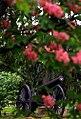 "Cincinnati - Spring Grove Cemetery & Arboretum ""Civil War Canon"" (8821942476).jpg"
