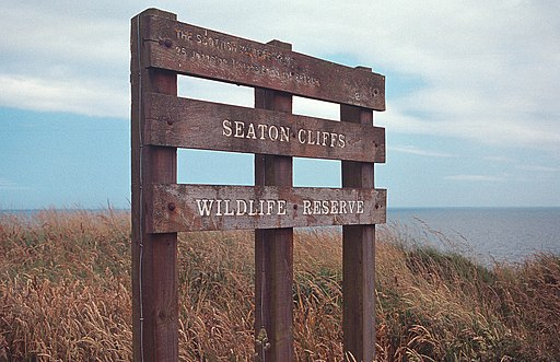 Cliffs near Arbroath i Seaton Cliffs Wildlife Reserve sign