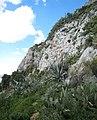 Climbing Lykavittos (3355518528).jpg