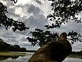 Cloudy day in wilpattu.jpg
