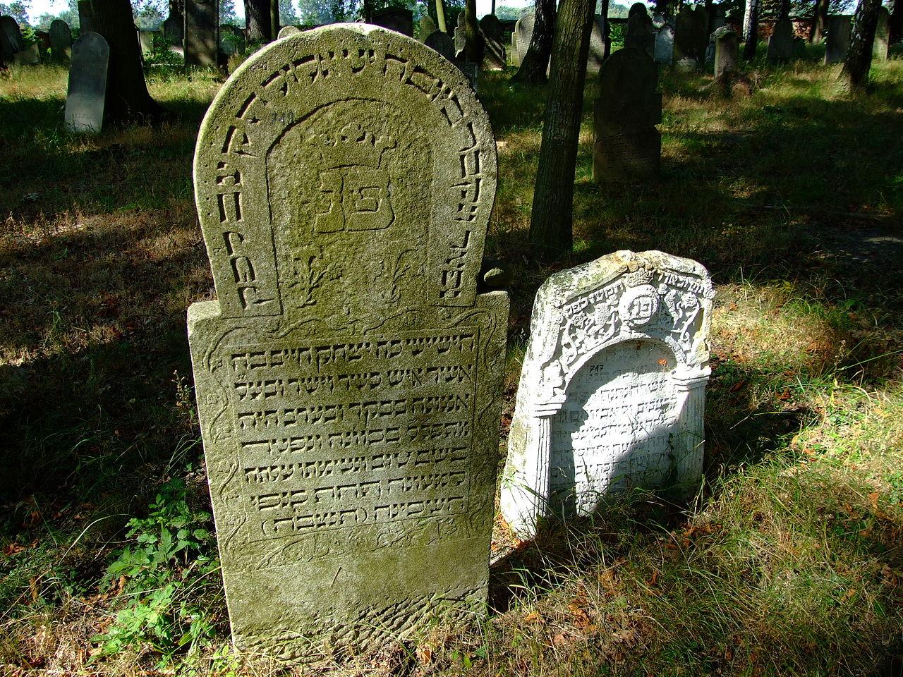 Cmentarz żydowski w Dobrodzieniu49.JPG