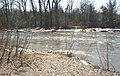 Cobb River.jpg