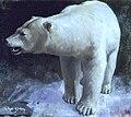Colin Campbell Cooper, Polar Bear (1912).jpg