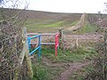 Coloured Gates at footpath junction - geograph.org.uk - 1125914.jpg