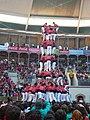 Concurs de Castells 2008 P1220468.JPG