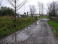 Coneywarren in the rain - geograph.org.uk - 704898.jpg