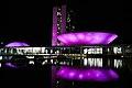 Congresso Nacional - Purple Day.jpg