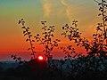 Coucher du soleil Ardennes - panoramio.jpg