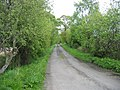 Country road - geograph.org.uk - 178166.jpg