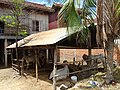 Cow Pen and Facades - Kampong Cham - Cambodia (48336137397).jpg