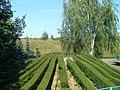 Cuś fajnego, zielonego - panoramio.jpg