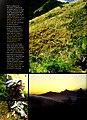 Cuba - Parque Nacional la Bayamesa (2005) (20793323032).jpg