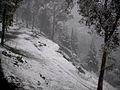 Curico, la nevada del 2007, cerro Condell (10029567363).jpg