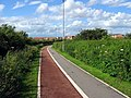 Cycle Path - geograph.org.uk - 865242.jpg