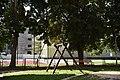 DSC 6289 August 2019 in Bialystok.jpg