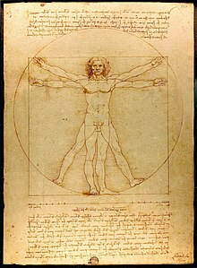 Leonardo de Vinci's Vitruvian Man - a drawing of the proportions of the human body.