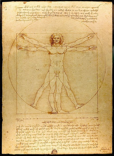 Leonardo da Vinci's Vitruvian Man (c. 1490) shows the correlations of ideal human body proportions with geometry described by the ancient Roman architect Vitruvius in his De Architectura. Vitruvius described the human figure as being like the principal source of proportion among the Classical orders of architecture.