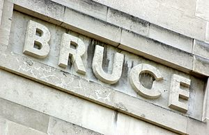 David Bruce (microbiologist) - David Bruce's name as it features on the LSHTM Frieze in Keppel Street
