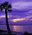 Dawn over Safety Harbor (14439568551).jpg