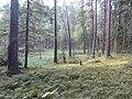 Degučių sen., Lithuania - panoramio (215).jpg
