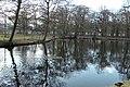 Den Haag - 2011 - panoramio (1).jpg