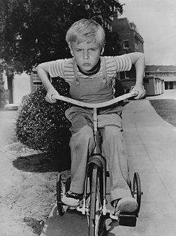 Dennis the Menace Jay North 1959.jpg